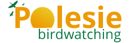 Birdwatching Polesie - Gmina Urszulin