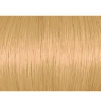 Light Golden Blonde 8G83 Of Lightest Golden Blonde Hair ...