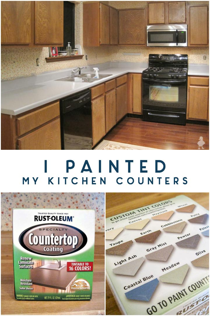 I Painted My Kitchen Countertops • Ugly Duckling House