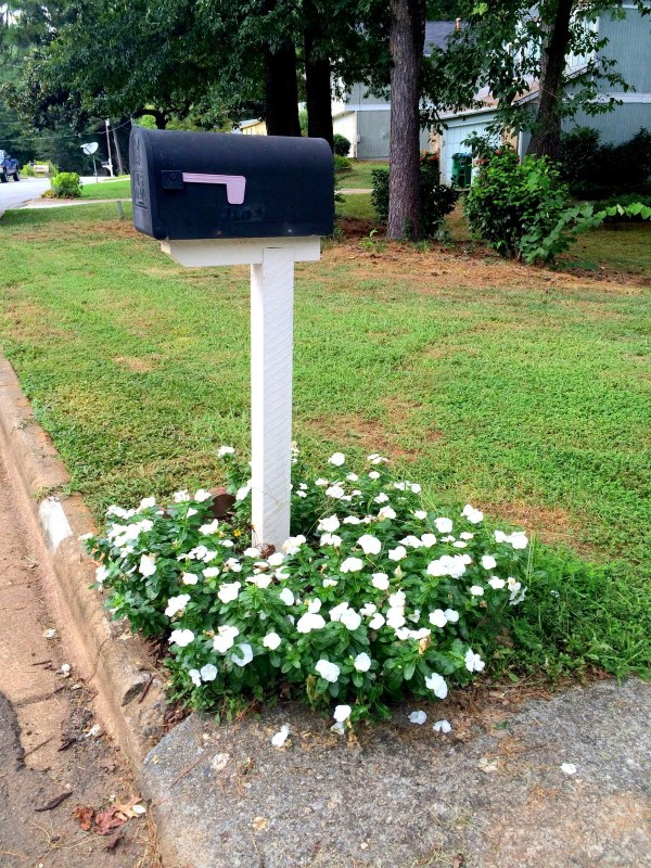 perfect flowers mailbox