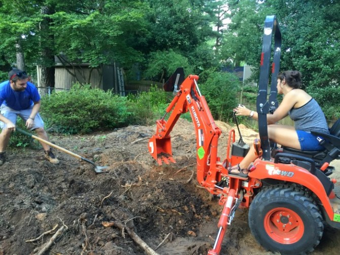friends helping with roots on the backhoe