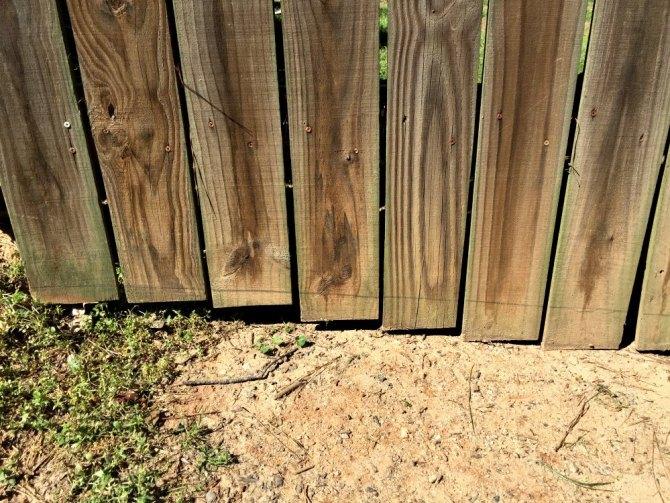 pencil line along fence gate