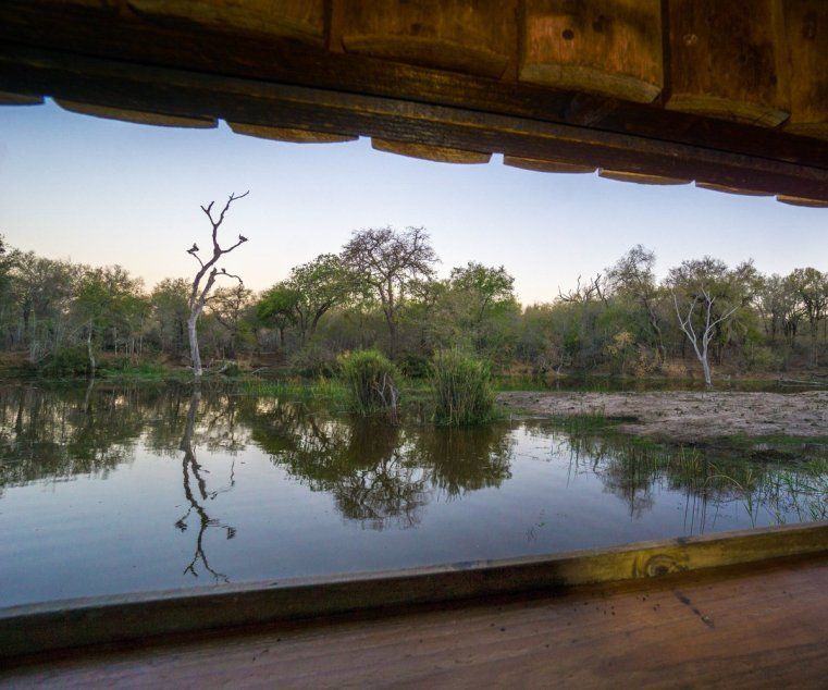 Late afternoon view from inside a bird hide