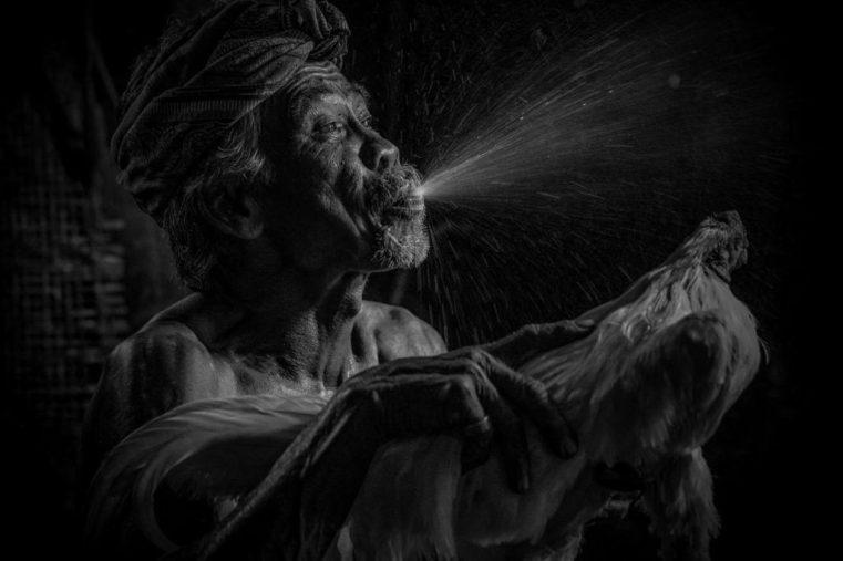 Bathing the Cockerel © Robin Yong