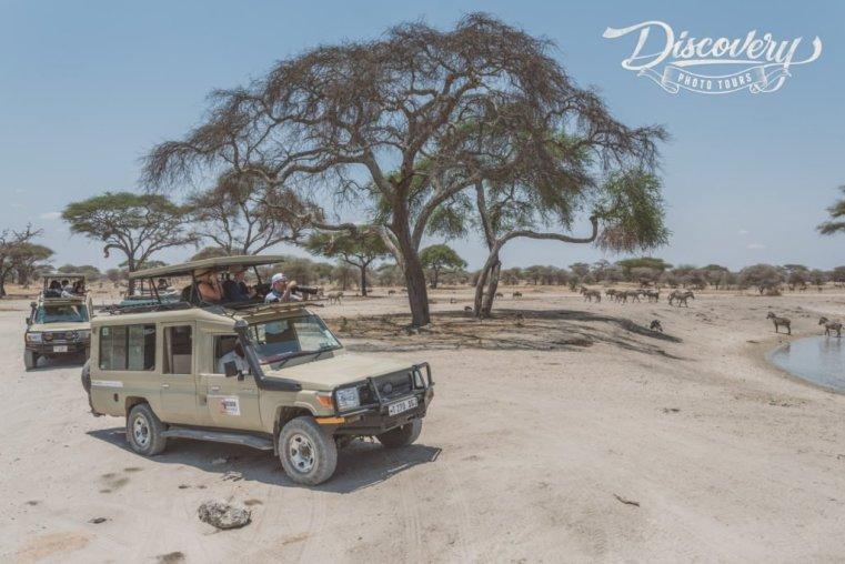 Tanzania VIP Photo Safari