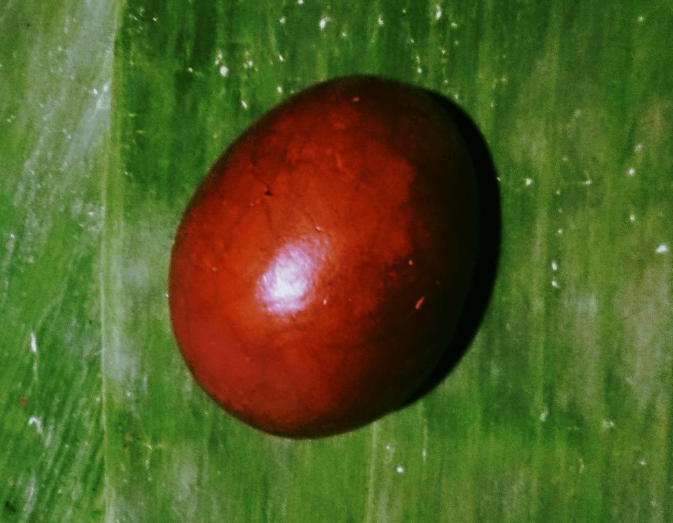 Chińskie jajka herbaciane