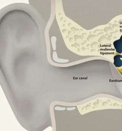 how we hear [ 1920 x 500 Pixel ]