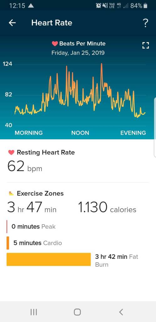 Fitbit App: Herzfrequenz eines Tages