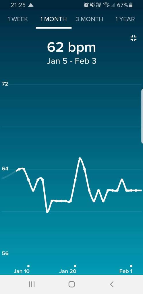 Fitbit App Overview of HR Data, Full Screen View