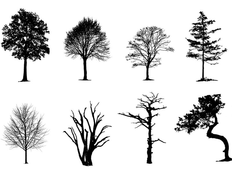 vector trees pack free
