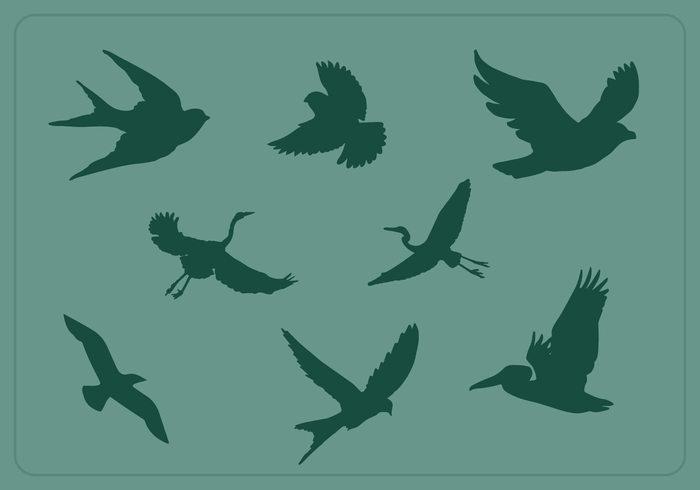 free flying bird silhouette