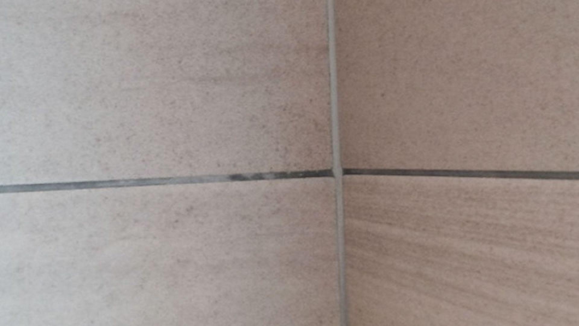 efflorescence on tile grouts weber uk