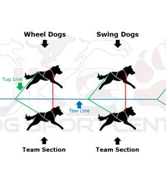 dog sled clipart [ 1397 x 777 Pixel ]