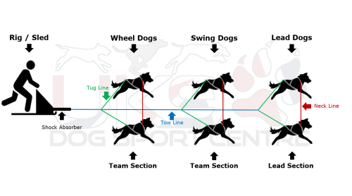small resolution of dog sled clipart