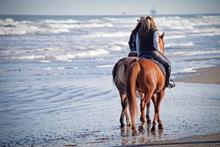 Horse Riding Adventure Holidays