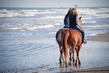 Horse Riding Adventure Holidays