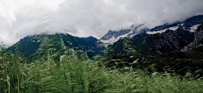 Southern Albanian highlands in Fir of Hotova National Park.     Photo: Mustfah Abdulaziz