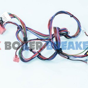 Vaillant-0020210200-Wiring-Harness