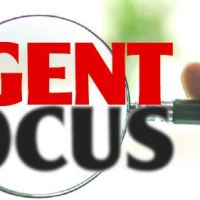 Agent Focus Aug 19