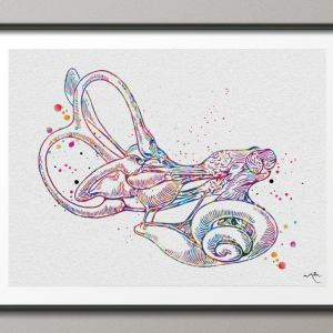 Cochlea Vestibular System Watercolor Print Ear Anatomy Middle Art Audiologist Gift Audiology Clinic Decor Vestibule Medical Office-397