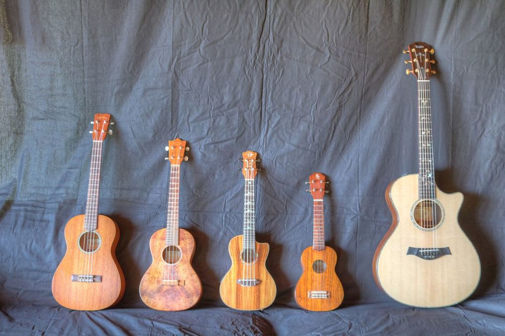 Ukulele vs Guitar : Which One Should You Play? 