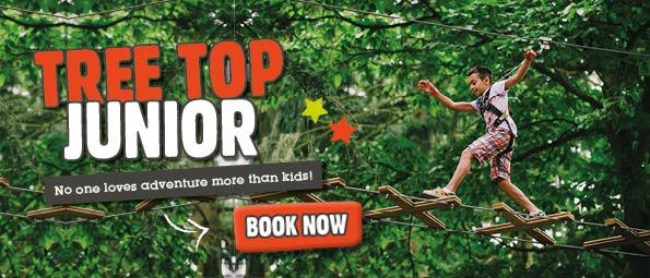 Goape Tree Top Junior Experience