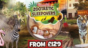 Chessington Resort Zootastic Sleepovers from £129