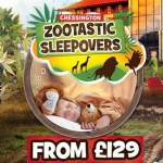 Chessington Resort Zootastic Sleepovers from £129