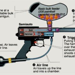 Basic Gun Diagram Iveco Daily 2008 Wiring Best Paintball For Self Defence