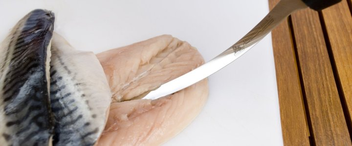 best fish filleting knife