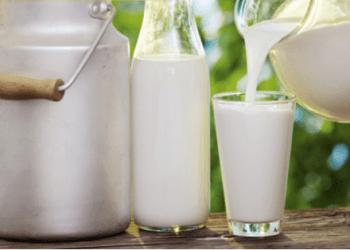 دائرة الغذاء والمستهلك الحكومية تطلق مشروعا رياديا للتحكم في الحليب الخام