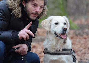 لماذا يتمتع الأشخاص الذين لديهم حيوانات أليفة بمستوى عالٍ من الذكاء