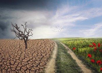 الاتحاد الاوروبي يضخ 100 مليار دولار في مشاريع المناخ سنويا
