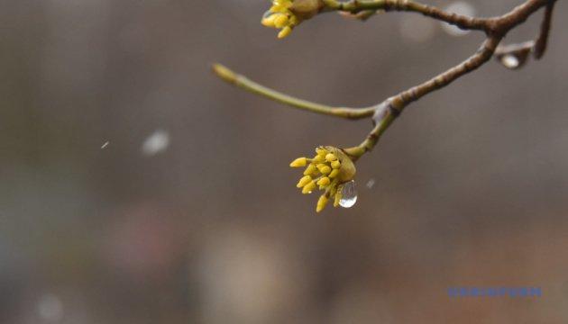 الطقس يزداد برودة في أوكرانيا