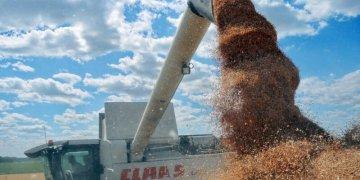 صادرات الحبوب في اوكرانيا