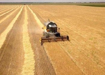 اوكرانيا تحتل المركز الرابع من حيث صادرات السلع الزراعية إلى الاتحاد الأوروبي