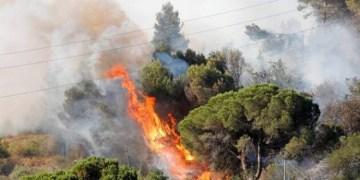 حريق في إسبانيا يدمر 400 هكتار من المنتزه الطبيعي
