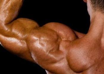 ما هي أعراض تمزق العضلات؟
