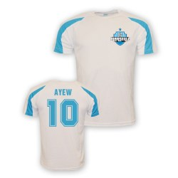Andre Ayew Marseille Sports Training Jersey (white)