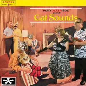 pdr-cat-sounds-album-cover-5x5-300dpi