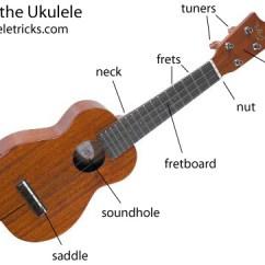 Guitar Parts Diagram Wye Delta Control Wiring Ukulele Great Installation Of Anatomy The Rh Ukuleletricks Com