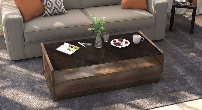 alita storage coffee table
