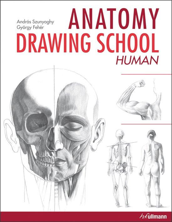 Anatomy Drawing School: Human Body - Buy book online ...