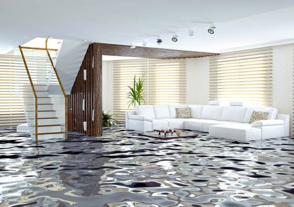 WATER DAMAGE & RESTORATION