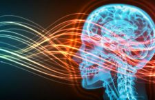 Francia: tribunale riconosce disabilità provocata dall'elettromagnetismo. Anche di quello dei cellulari