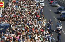 """Germania: 1/3 dei migranti arrivati non sono affatto siriani. Provengono da paesi """"sicuri"""""""