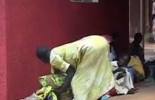 Febbre gialla: strage in Angola dopo 30 anni. 51 morti. Oltre 200 infettati