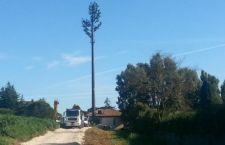 Roma: la mega antenna telefonica tra le case camuffata da albero … e la cattiva coscienza