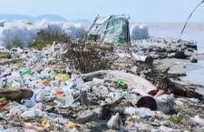 Un enzima mangia la plastica. Verso la soluzione di un grave problema?