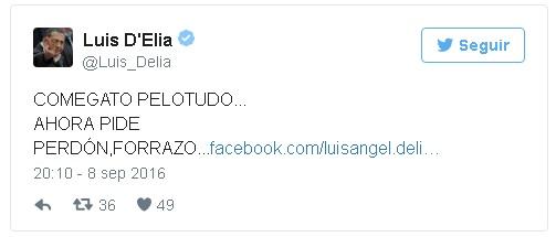 delia-tweet